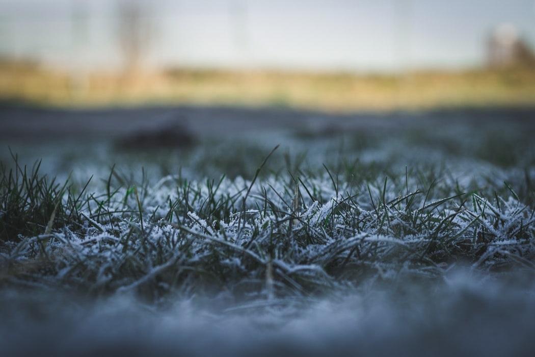 Gras maaien voor de winter